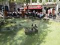 Canards colverts, Place du Huit-Septembre à Besançon.jpg