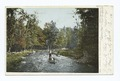 Canoeing in the Maine Woods, Maine (NYPL b12647398-62913).tiff