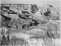 "Canyon with ravine winding through center, high horizon, ""Grand Canyon National Park,"" Arizona., 1933 - 1942 - NARA - 519892.tif"
