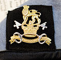Cap badge of the Military Provost Guard Service (MPGS). MOD 45159322.jpg