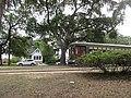 Carrollton New Orleans 4 Sept 2020 07.jpg