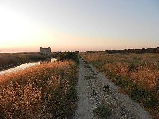 Casa dei pescatori (Anello Riserva Naturale della Diaccia Botrona, sentiero n° 31 o RET 010)