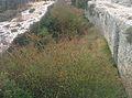 Castellar de Meca 16.jpg