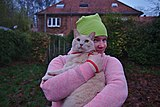 Cat in a harness being held by a pink human in Auderghem, Belgium.jpg