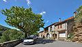 Ceps, Roquebrun, Hérault 06.jpg