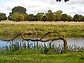 Charlecote park - panoramio (1).jpg