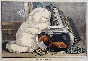 """Fishing"": ""Print shows a cat w..."