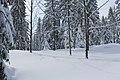 Chemin de randonnée vers la cabane du Carroz - panoramio (24).jpg