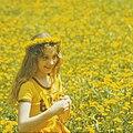Childhood-dandelion (80-ies famous). (6753844787).jpg