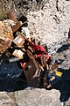 China huangshan love-locks metal post IMG 2866.jpg