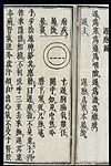 Chinese-Japanese Pulse Image chart; Slow Pulse (chimai) Wellcome L0039546.jpg