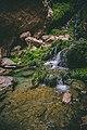 Chota Chotok-12.jpg