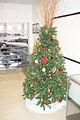 Christmas Tree Catwalk FOF 14Dec09 (14588551674).jpg