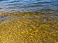 Clear waters of Fernworthy Reservoir - April 2015 - panoramio.jpg