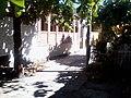 Colonia Santa Lucia, San Salvador, El Salvador - panoramio (12).jpg
