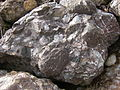 Conglomerate.2489.JPG