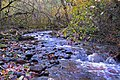 Cool Mountain Stream - panoramio.jpg