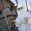 Costumed Human (6923617527).jpg