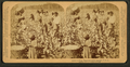 Cotton is king - A plantation scene, Georgia, by Underwood & Underwood 4.png