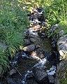 Creek - Oslo, Norway 2020-08-04 (02).jpg