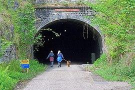 Cressbrook Tunnel (geograph 2422402).jpg