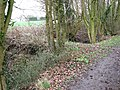 Culverted drainage ditch - geograph.org.uk - 1780021.jpg