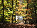 Dötlingen-Hunte im Herbst.JPG