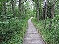 Dūkštų sen., Lithuania - panoramio (35).jpg