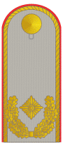 DH311-Brigadegeneral