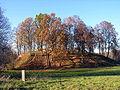 Daubariu piliakalnis.z., 2005-10-31.JPG