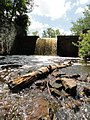Davidson Mill Pond Park, South Brunswick, New Jersey USA July 15th, 2013 - panoramio (15).jpg