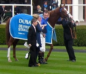 Dawn Approach - Dawn Approach after winning the Dewhurst Stakes in 2012.