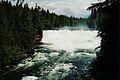Dawson Falls.JPG
