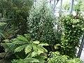De Plantage (15).jpg