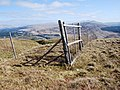 Deer fence - geograph.org.uk - 1258162.jpg