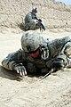 Defense.gov News Photo 070607-A-9307C-006.jpg