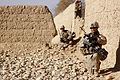 Defense.gov News Photo 110118-M-3952S-039 - U.S. Marines and Afghan soldiers conduct a census patrol in the Sangin district of Helmand province, Afghanistan, on Jan. 18, 2011.jpg