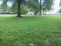 Delft - 2011 - panoramio (127).jpg