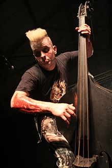 Demented Are Go's upright bassist.