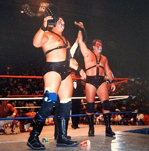 Demolition (professional wrestling) - Smash (left) and Ax as WWF Tag Team Champions