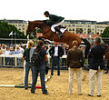 Denis Lynch and Nabab's Son, Dublin (Irl) CSIO***** 2008.jpg