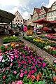 Der regionale Wochenmarkt in Bad Mergentheim. 07.jpg