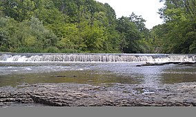 Des Plaines Fish and Wildlife Area - panoramio.jpg