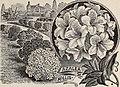 Descriptive catalogue of ornamental trees, shrubs, vines, evergreens, hardy plants and fruits (1900) (20532712646).jpg