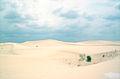 DesertMonahans.jpg