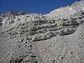 Desierto de Chile - panoramio (38).jpg