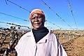 Die Mas vineyard, Wine Route, Upington, Northern Cape, South Africa (20547552591).jpg