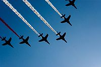 Dimitri Torterat - Patrouille Acrobatique de France passing by (French Bastille Day 2009) - (4).jpg