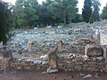 Dimitriados palace Pefkakia.jpg