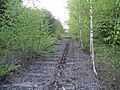 Dismantled railway looking north 2 - geograph.org.uk - 408998.jpg